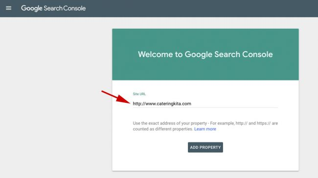 Google Search Console Add URL website