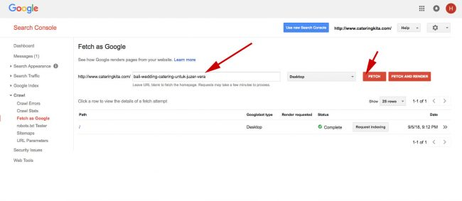 Google Search Console Fetch and render