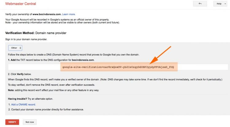 custom domain google site add txt