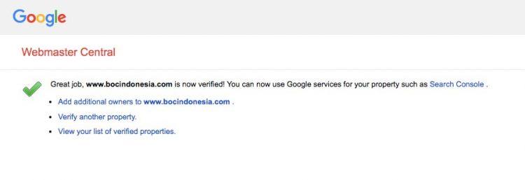 Setting berhasil Custom Domain name Google sites