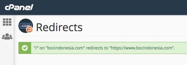 Domain redirect sukses
